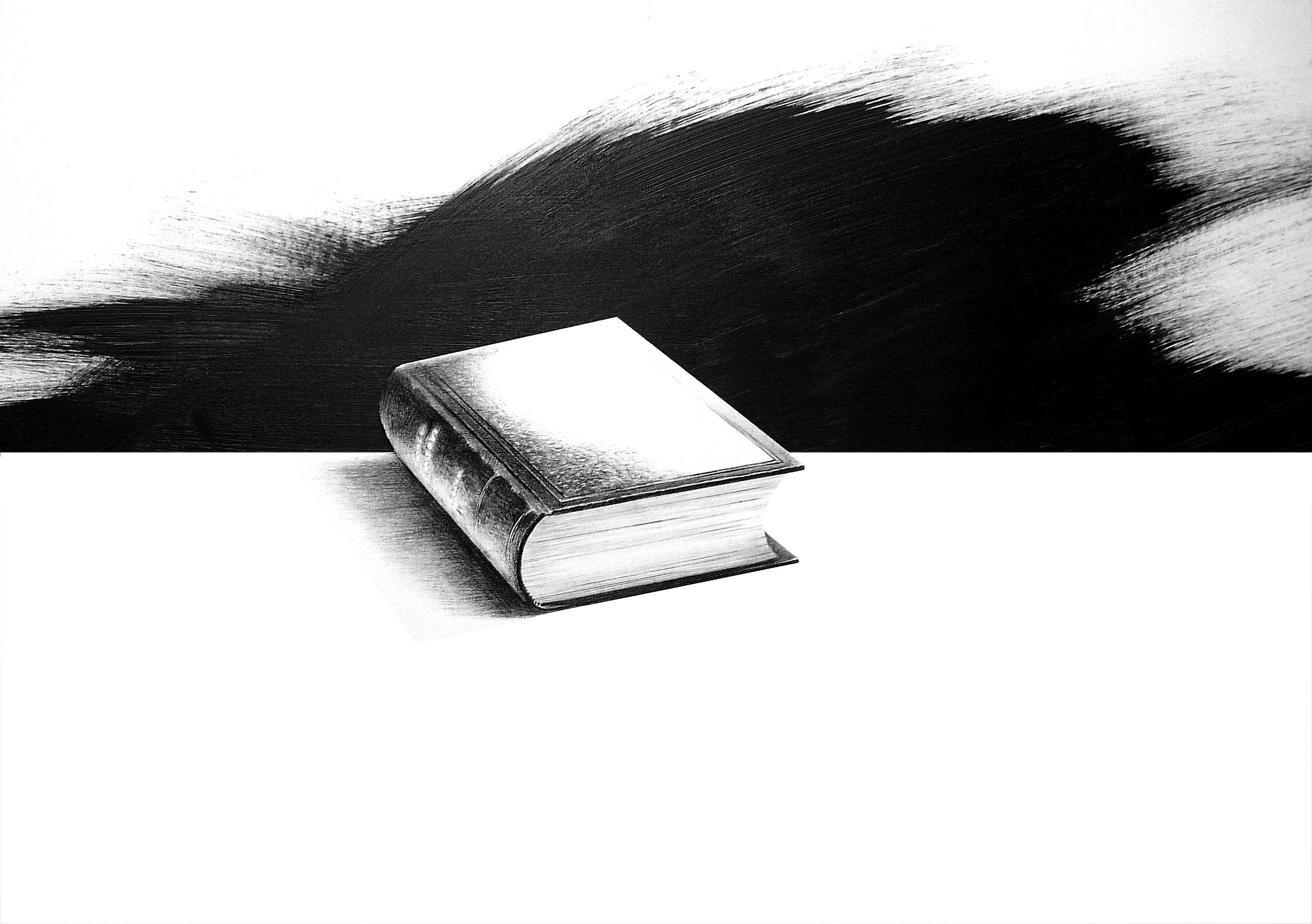 zwerichst – 1001 Buch a